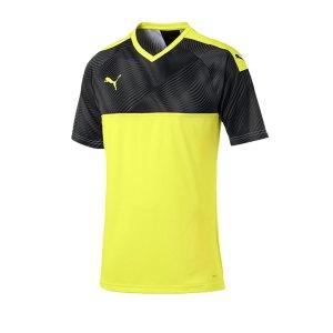 puma-cup-jersey-trikot-kurzarm-gelb-schwarz-f46-fussball-teamsport-textil-trikots-703773.png