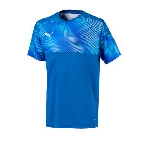 puma-cup-jersey-trikot-kurzarm-kids-blau-f02-fussball-teamsport-textil-trikots-703774.png