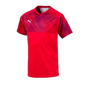 puma-cup-jersey-trikot-kurzarm-kids-rot-f01-fussball-teamsport-textil-trikots-703774.png