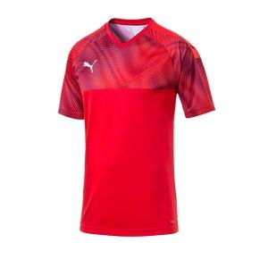 puma-cup-jersey-trikot-kurzarm-rot-f01-fussball-teamsport-textil-trikots-703773.png