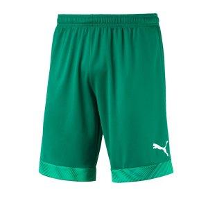 puma-cup-short-dunkelgruen-weiss-f05-fussball-teamsport-textil-shorts-704034.png