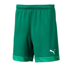 puma-cup-short-kids-dunkelgruen-weiss-f05-fussball-teamsport-textil-shorts-704035.png