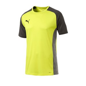 puma-cup-sideline-core-t-shirt-gelb-f16-fussball-teamsport-textil-t-shirts-656051.png
