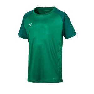 puma-cup-sideline-core-t-shirt-kids-gruen-f05-fussball-teamsport-textil-t-shirts-656052.png