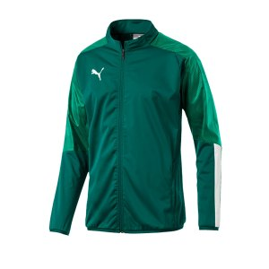 puma-cup-sideline-jacket-jacke-gruen-f05-fussball-teamsport-textil-jacken-656043.png