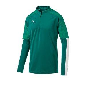 puma-cup-training-1-4-zip-top-gruen-f05-fussball-teamsport-textil-sweatshirts-656016.png