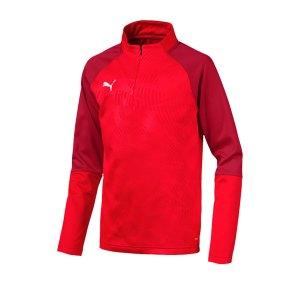 puma-cup-training-core-1-4-zip-top-kids-rot-f01-fussball-teamsport-textil-sweatshirts-656019.png