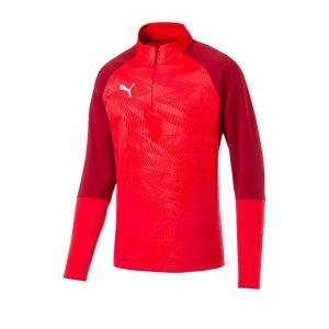 puma-cup-training-core-1-4-zip-top-rot-f01-fussball-teamsport-textil-sweatshirts-656018.png