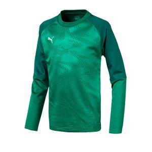 puma-cup-training-core-sweatshirt-kids-gruen-f05-fussball-teamsport-textil-sweatshirts-656022.png