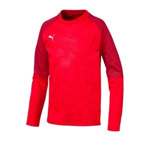 puma-cup-training-core-sweatshirt-kids-rot-f01-fussball-teamsport-textil-sweatshirts-656022.png