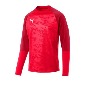 puma-cup-training-core-sweatshirt-rot-f01-fussball-teamsport-textil-sweatshirts-656021.png