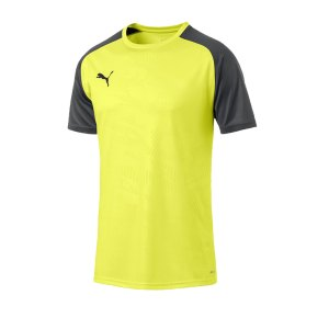 puma-cup-training-core-t-shirt-gelb-f16-fussball-teamsport-textil-t-shirts-656027.png