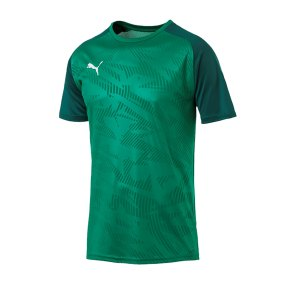 puma-cup-training-core-t-shirt-gruen-f05-fussball-teamsport-textil-t-shirts-656027.png