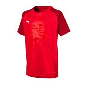 puma-cup-training-core-t-shirt-kids-rot-f01-fussball-teamsport-textil-t-shirts-656028.png