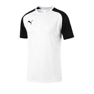 puma-cup-training-core-t-shirt-weiss-f04-fussball-teamsport-textil-t-shirts-656027.png