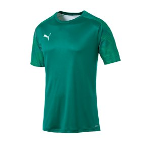 puma-cup-training-t-shirt-gruen-f05-fussball-teamsport-textil-t-shirts-656023.png