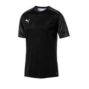 puma-cup-training-t-shirt-schwarz-f03-fussball-teamsport-textil-t-shirts-656023.png