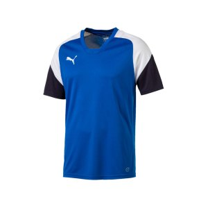 puma-esito-4-trainingsshirt-f02-fussball-training-shirt-sport-team-mannschaft-kids-655221.png
