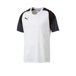 puma-esito-4-trainingsshirt-f04-fussball-training-shirt-sport-team-mannschaft-kids-655221.png