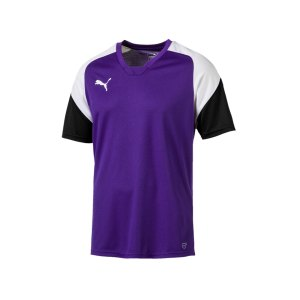 puma-esito-4-trainingsshirt-f10-fussball-training-shirt-sport-team-mannschaft-kids-655221.png