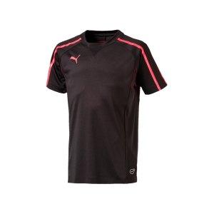 puma-evotrg-tech-tee-trainingsshirt-kids-f06-655334-fussball-textilien-t-shirts-training-oberteil-textilien.png