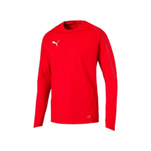 puma-final-training-sweathsirt-f01-teamsport-mannschaft-match-ausruestung-655290.png