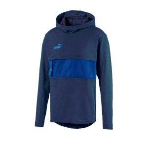 puma-ftblnxt-casuals-hoody-blau-f04-fussball-textilien-sweatshirts-656452.png