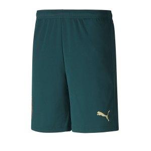 puma-italien-third-short-em-2020-gruen-f03-replicas-shorts-nationalteams-756441.png