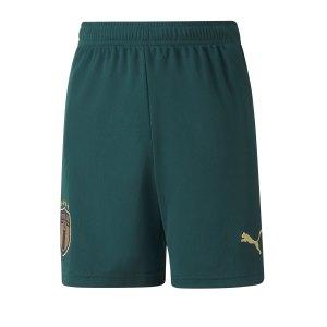 puma-italien-third-short-em-2020-kids-gruen-f03-replicas-shorts-nationalteams-756449.png