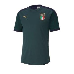 puma-italien-training-jersey-t-shirt-19-gruen-f03-lifestyle-schuhe-kinder-sneakers-757219.png