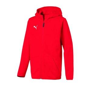 puma-liga-casual-jacket-jacke-kids-f01-fussball-spieler-teamsport-mannschaft-verein-655938.png