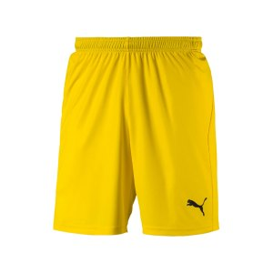 puma-liga-core-short-f07-hose-kurz-teamsport-match-training-mannschaft-703436.png