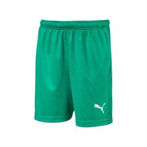 puma-liga-core-short-kids-gruen-weiss-f05-teamsport-textilien-sport-mannschaft-703437.png