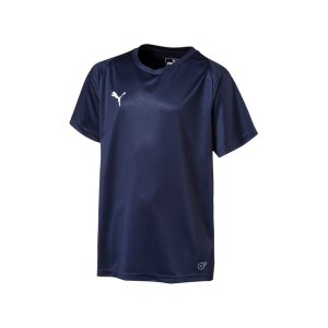 puma-liga-core-trikot-kurzarm-kids-blau-weiss-f06-teamsport-mannschaft-spiel-703542.png