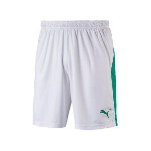 puma-liga-short-weiss-gruen-f15-teamsport-textilien-sport-mannschaft-703431.png