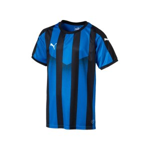 puma-liga-striped-trikot-kurzarm-kids-blau-f22-teamsport-textilien-sport-mannschaft-kinder-jugendliche-703425.png