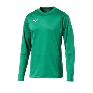 puma-liga-training-sweatshirt-gruen-f05-teampsort-mannschaft-ausruestung-655669.png