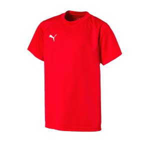 puma-liga-training-t-shirt-kids-rot-weiss-f01-teamsport-textilien-sport-mannschaft-freizeit-655631.png