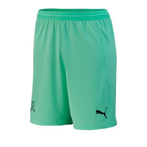 puma-schweiz-torwartshort-em-2020-kids-gruen-f04-replicas-shorts-nationalteams-756573.png