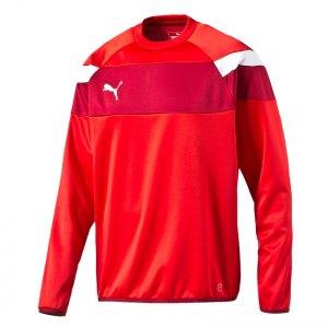 puma-spirit-2-training-sweatshirt-kids-f01-teamsport-vereine-mannschaft-men-herren-654656.png