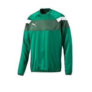puma-spirit-2-training-sweatshirt-teamsport-vereine-mannschaft-men-herren-gruen-f05-654656.png