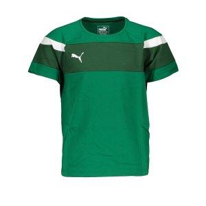 puma-spirit-ii-leisure-t-shirt-gruen-weiss-f05-fussball-teamsport-textil-t-shirts-654659.png