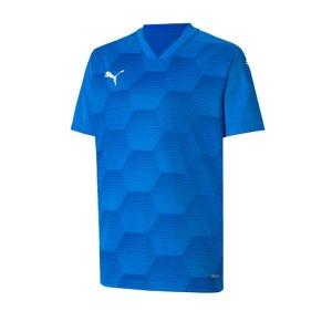 puma-teamfinal-21-graphic-trikot-kurzarm-kids-f02-fussball-teamsport-textil-trikots-704369.png