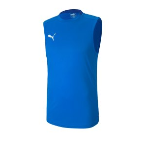 puma-teamfinal-21-training-trikot-aermellos-f02-fussball-teamsport-textil-trikots-656483.png