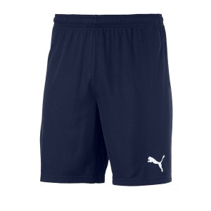 puma-teamgoal-23-knit-short-blau-f06-fussball-teamsport-textil-shorts-704262.png