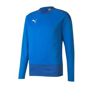puma-teamgoal-23-training-sweatshirt-blau-f02-fussball-teamsport-textil-sweatshirts-656478.png