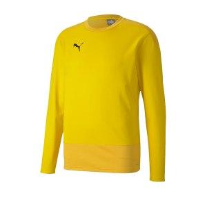 puma-teamgoal-23-training-sweatshirt-gelb-f07-fussball-teamsport-textil-sweatshirts-656478.png