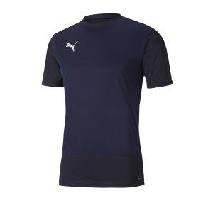 puma-teamgoal-23-training-trikot-blau-f06-fussball-teamsport-textil-trikots-656482.png