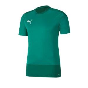 puma-teamgoal-23-training-trikot-gruen-f05-fussball-teamsport-textil-trikots-656482.png