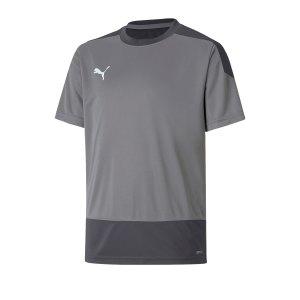 puma-teamgoal-23-training-trikot-kids-grau-f13-fussball-teamsport-textil-trikots-656569.png